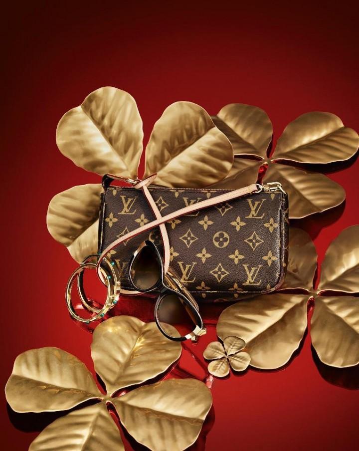 Louis Vuitton Pochette Accessoires Bag