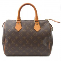 Louis Vuitton speedy 25 bag (3 of 8)
