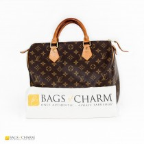 louis-vuitton-speedy-30-lvth0050-1
